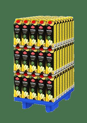 Marli Vital  Hedelmänektari + 10 vitamiinia 1L varttilava